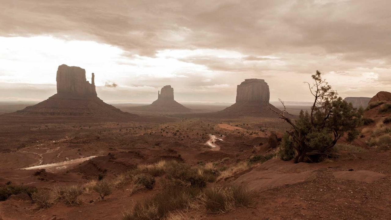 Parchi nazionali Stati Uniti