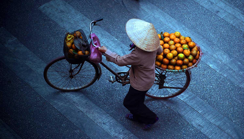 Vietnam classico